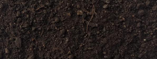 Organic Compost AF-Compost