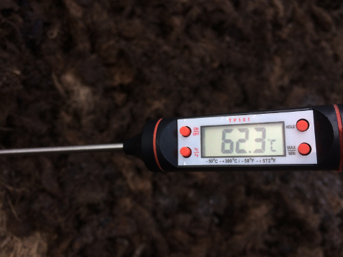 Thermometer used