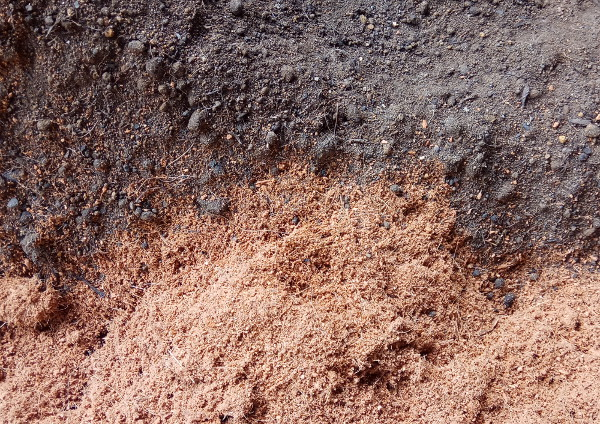 Cocopeat & Compost